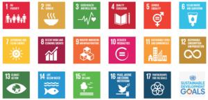 The SDG's